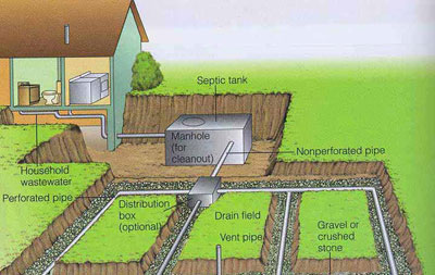 A Healthy Septic Tank